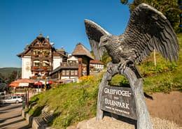 Triberg Eagle. Thrussells of Cornwall. Public Art Germany
