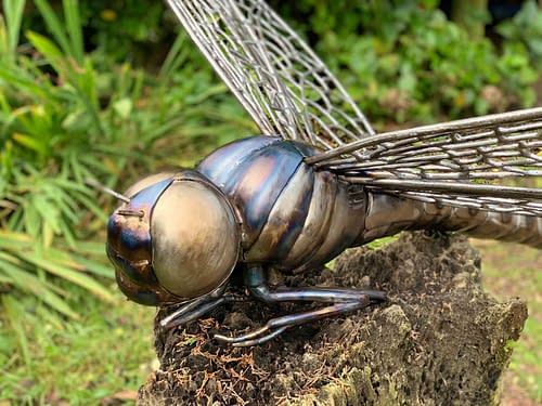 Giant Metal Dragonfly Sculpture created by Thrussells